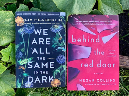 Double review: Psychological Thrillers released in 2020