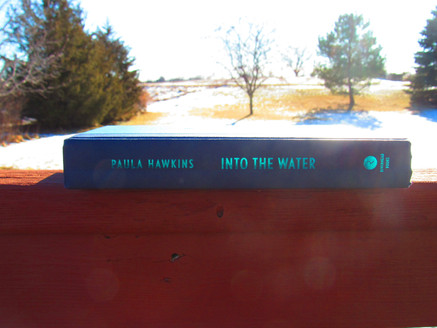 Into the Water & An American Marriage