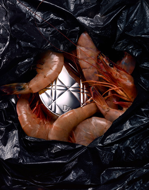 170404_bagged_shrimps_127_Focus_RT.jpg