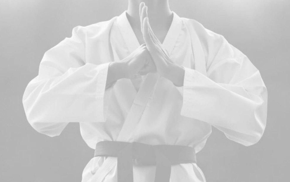 KaratePose%20-%20faded_edited.jpg