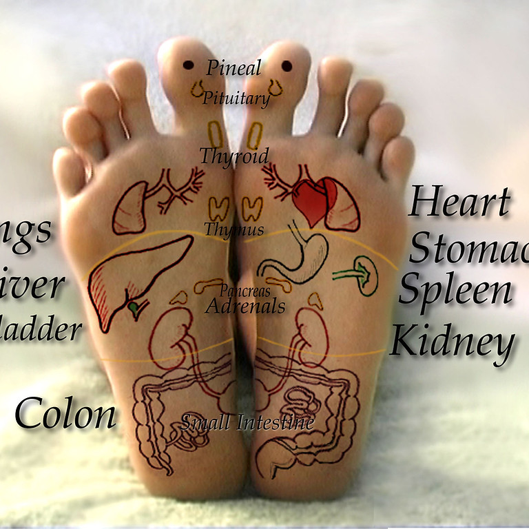 LIVE - Introduction To Reflexology