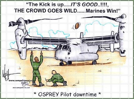 Osprey Down Time