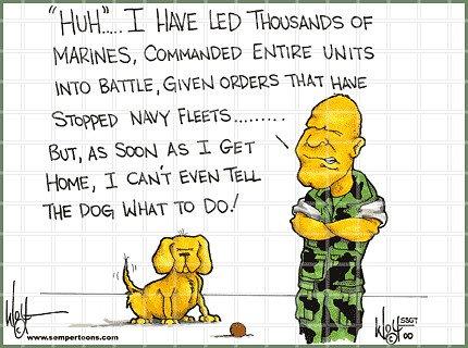 Command Dog