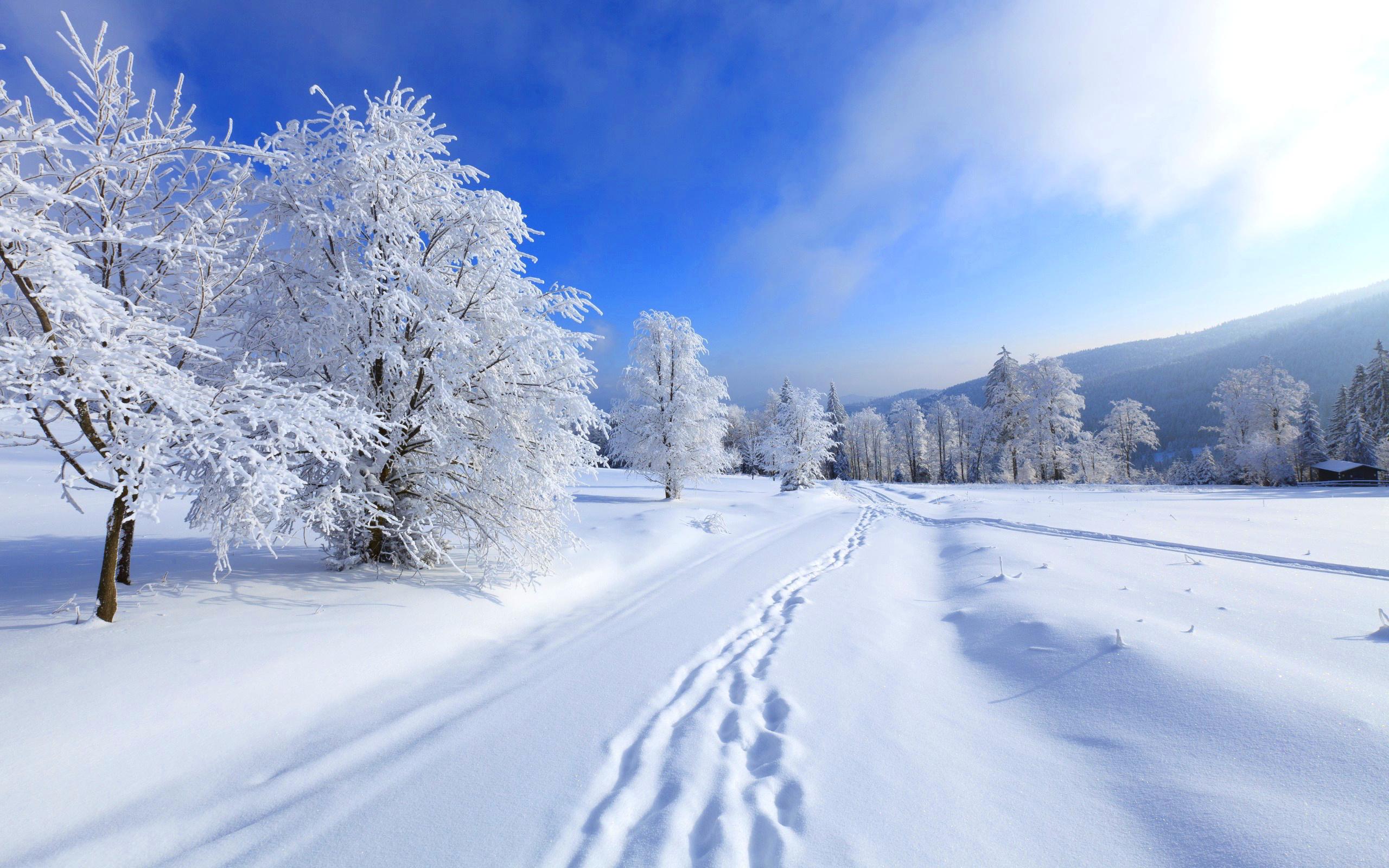 667758-snow-winter-photos