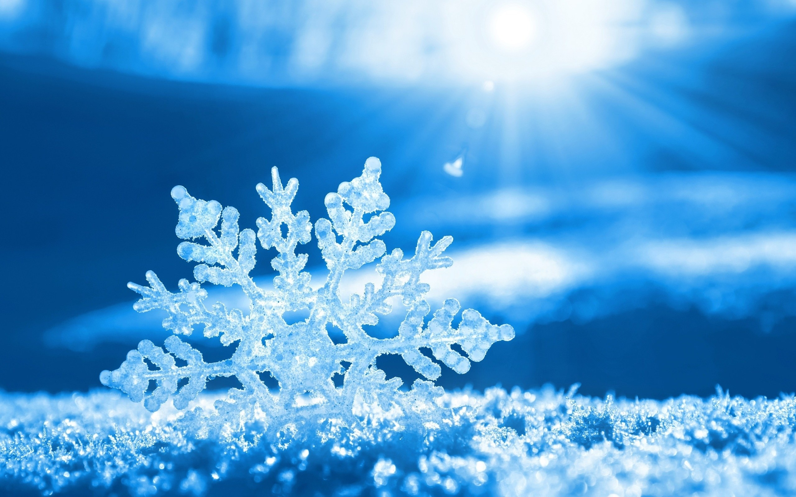 655029-snow-crystal