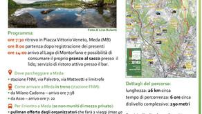 33^ MEDA - MONTORFANO