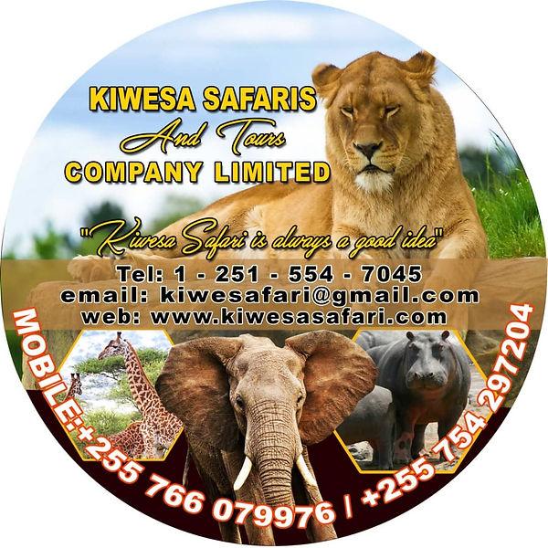 Safari Logo _edited.jpg