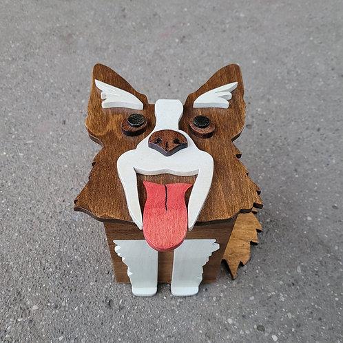 Brown Collie Dog