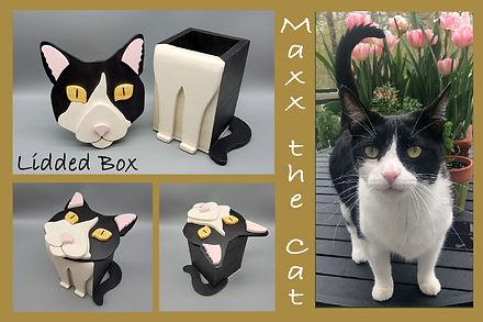 Maxx_Cat_4x6.jpg