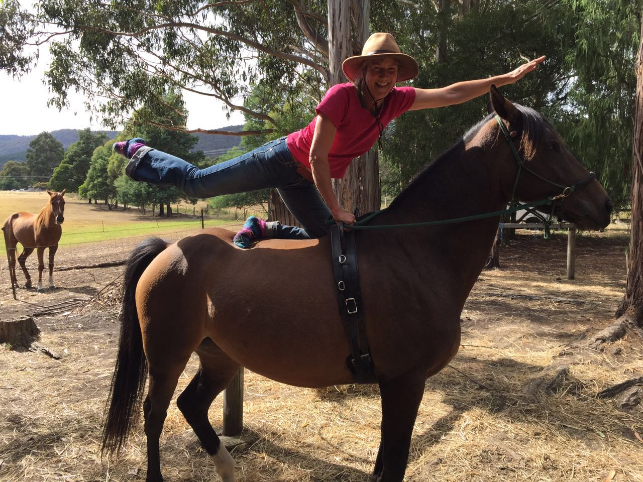 Conny Trying Some Yoga on a Horse