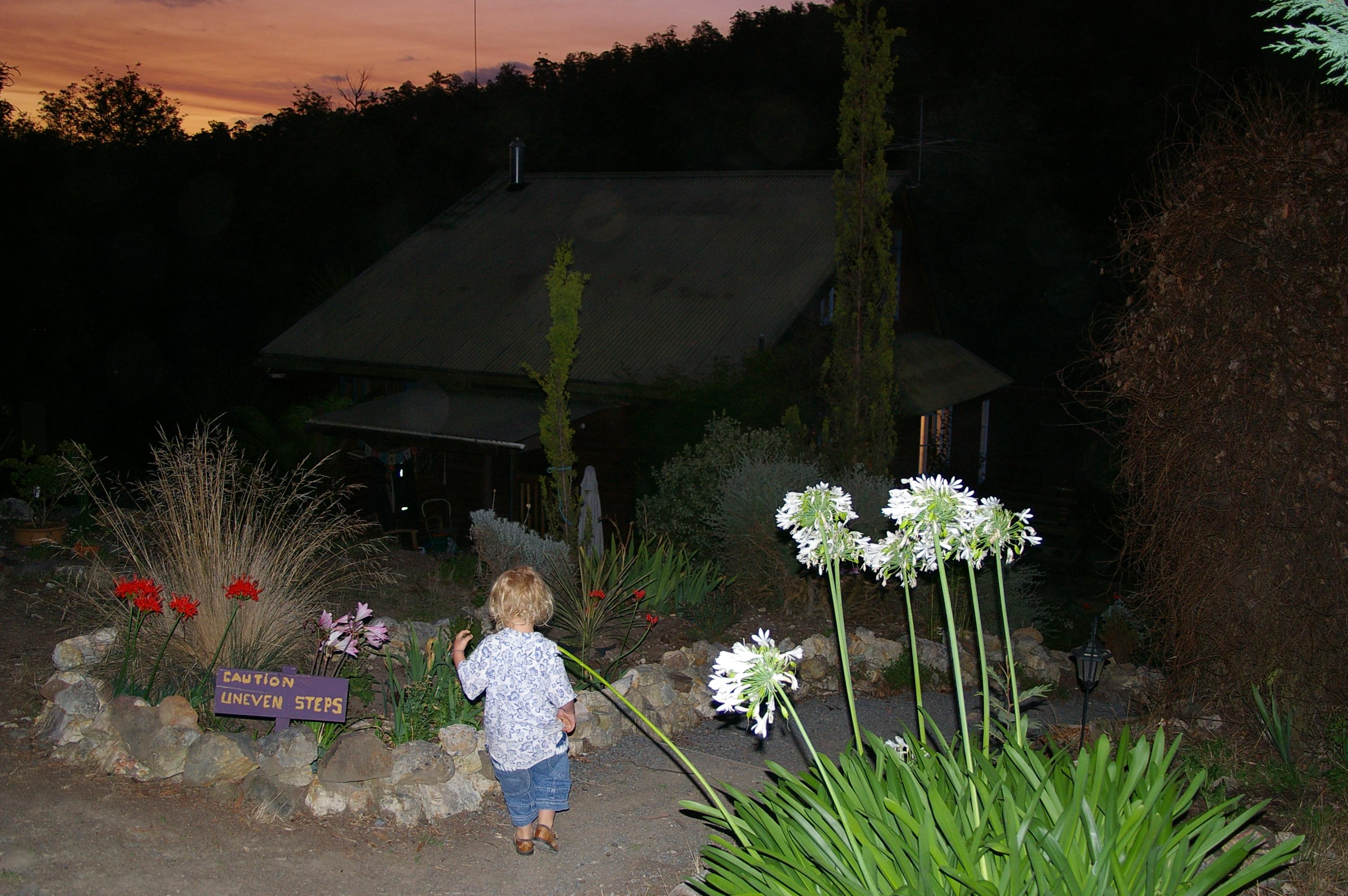 My grandson on an evening adventure!