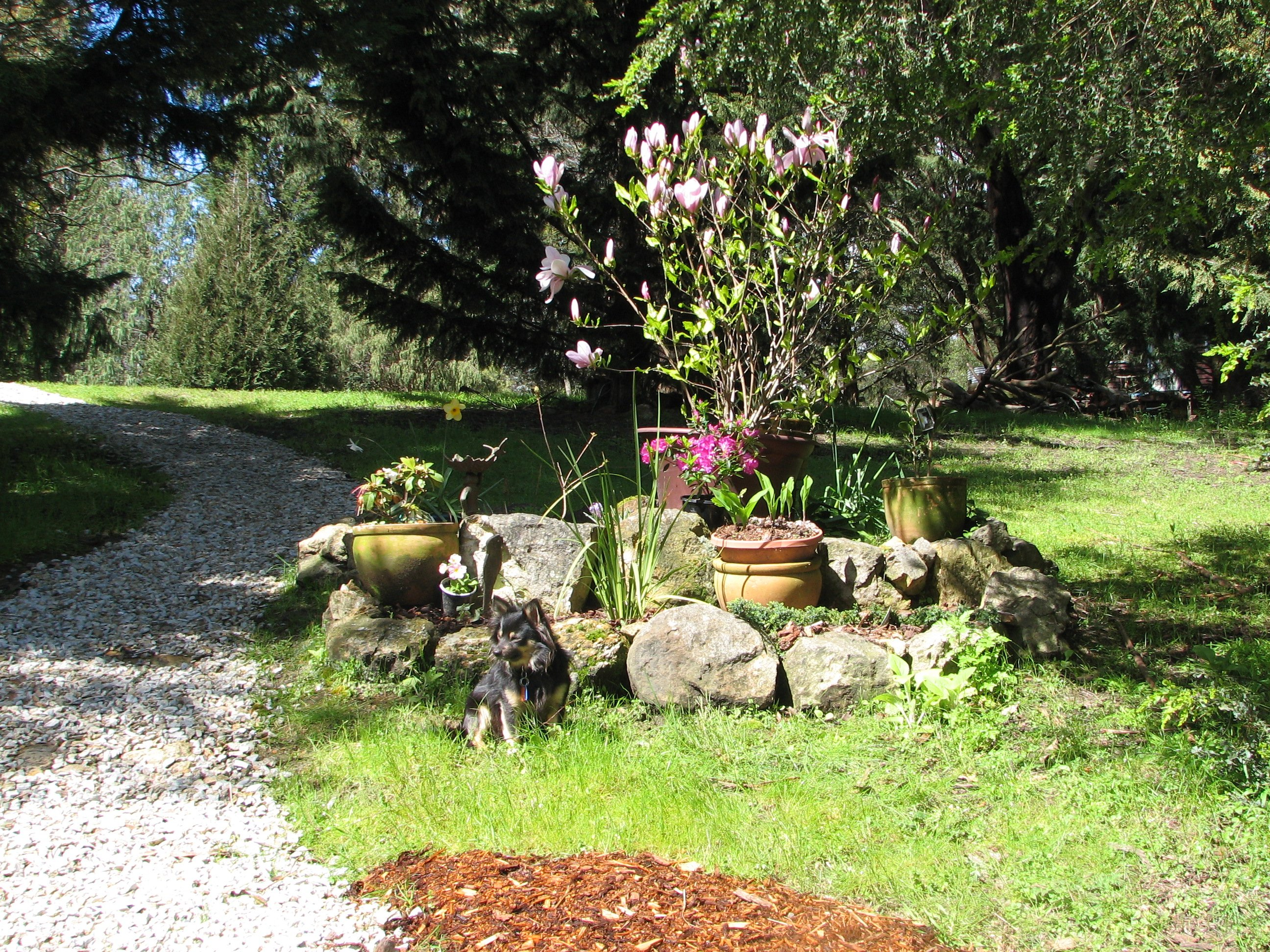Down The Secret Garden Path