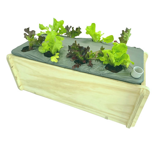 OurFarmBox Bundle -Planted (couriered)