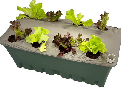 OurFarmBox Fully Planted (couriered )