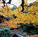 寺院と広島市民葬儀
