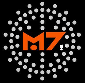 Mercury 7.jpeg