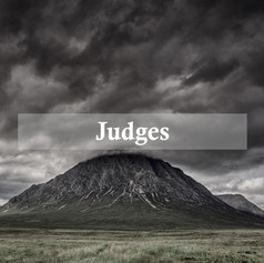 Judges (2017)