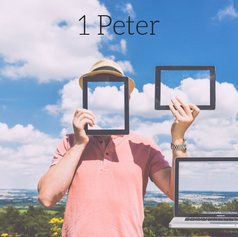 1 Peter 2016