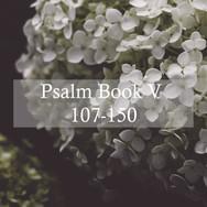 Psalm Book V, 107-150