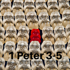 1 Peter 3-5 2014