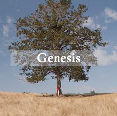 Genesis: Our story begins (2019)