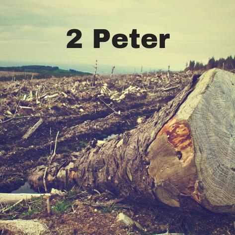 2 Peter 2016