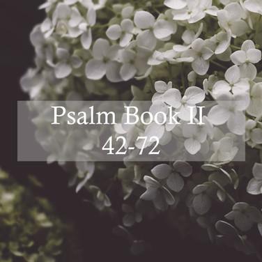 Psalm Book II, 42-72