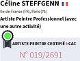 Côte Artiste Céline STEFFGENN.JPG