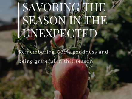 Savoring the Season in the Unexpected