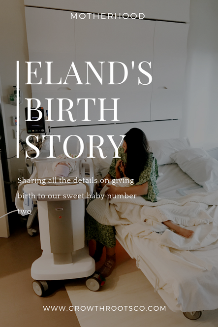Eland's Birth Story