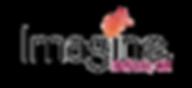 Imagine Desoto LogoFinal.png