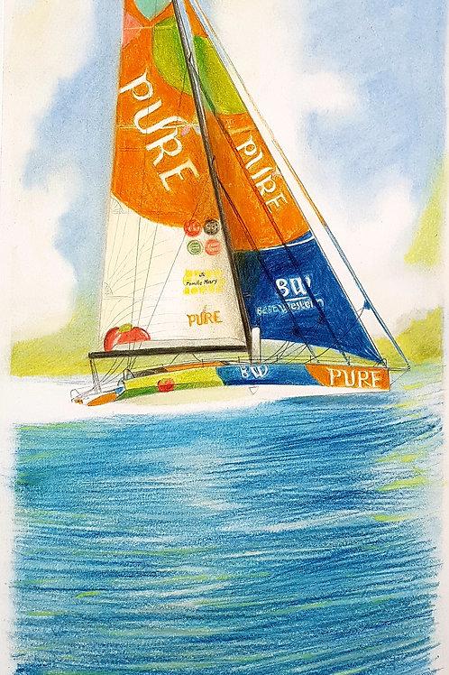 Pure, Portrait de voilier du Vendée Globe 2020 Collection format 40 X20 cm reproduction