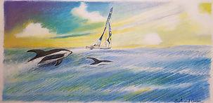 Clément Giraud et les dauphins de Commer