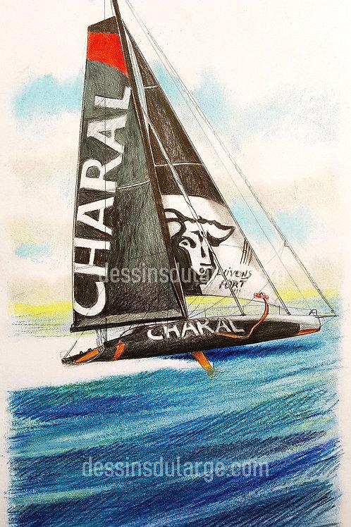 Charal Portrait de voilier du Vendée Globe 2020 Collection format 40 X20 cm reproduction