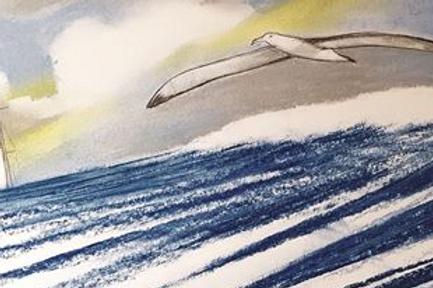 "Golden Globe Race 2018/19 40 X 20 cm ""Albatros"" papier 250 g"