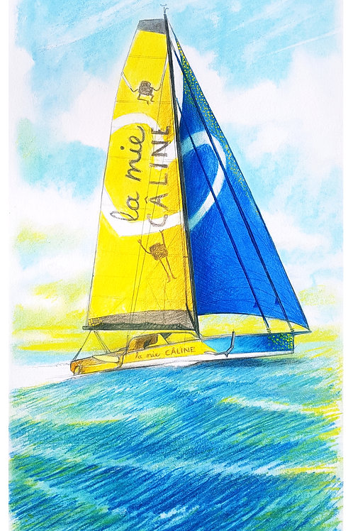 La Mie Câline, Portrait de voilier du Vendée Globe 2020 Collection format 40 X20 cm reproduction