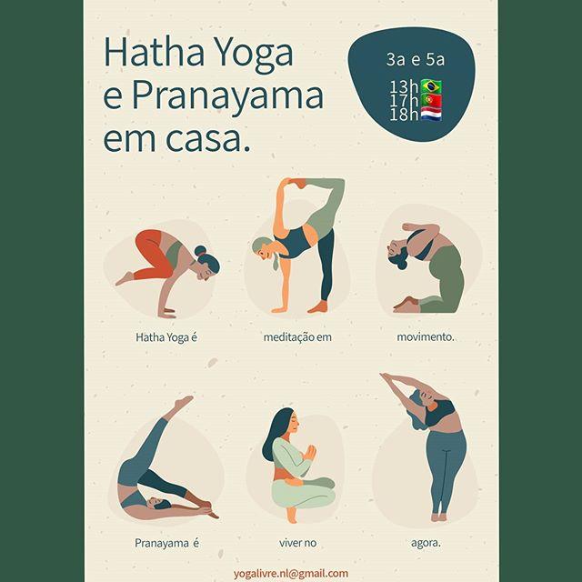 Hatha Yoga e Pranayama on-line.