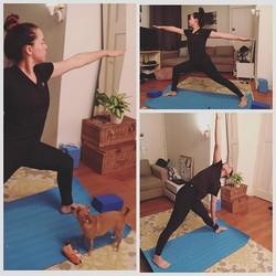 Personal Yoga com Emanuela