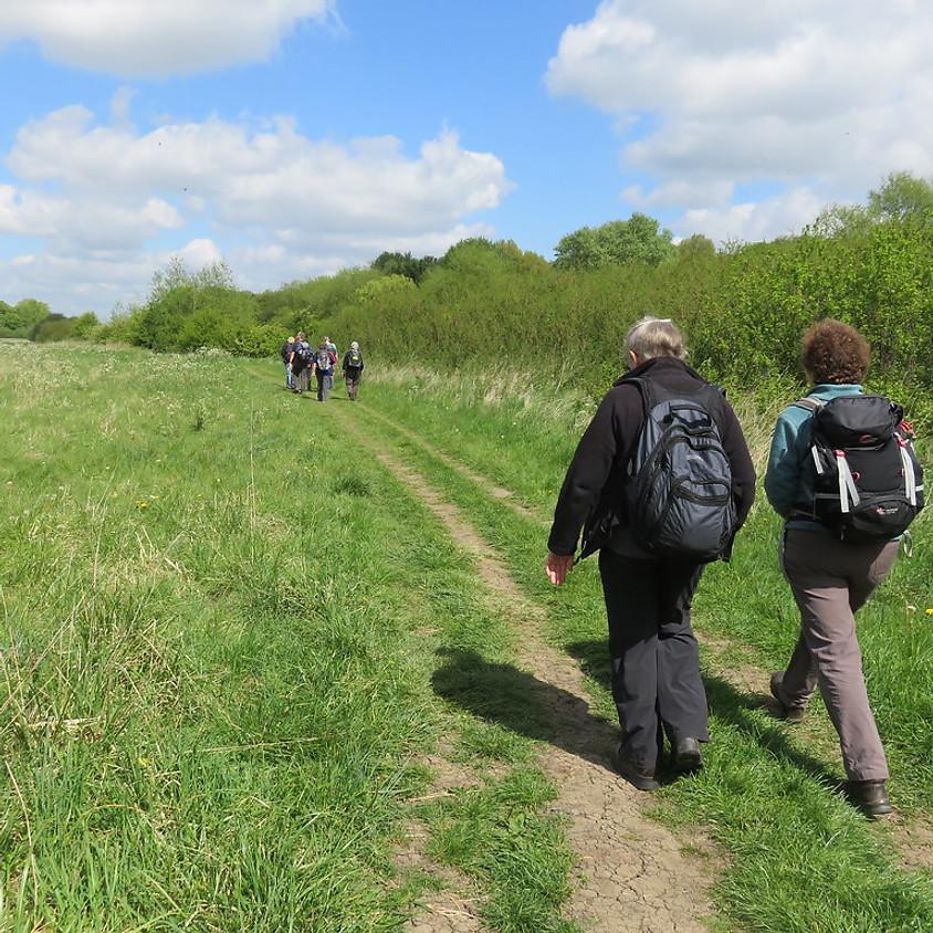 Cholsey to Goring Thames Path Walk