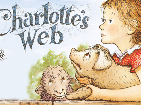 Top 5 reads for parent and child alike