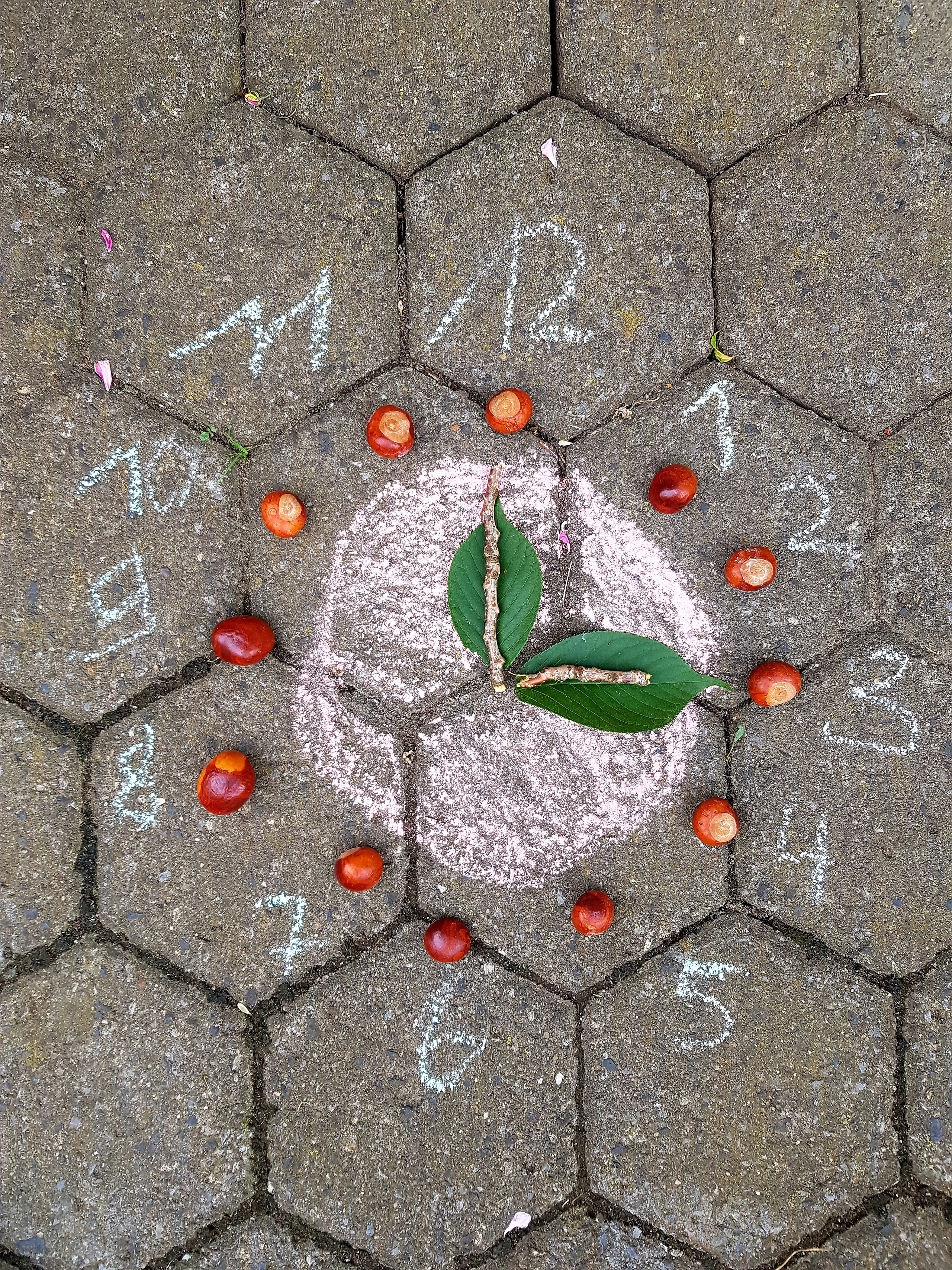 DIY Chestnut Activities for Kids - Fall STEM Activity