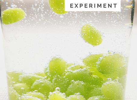 DIY Dancing Grapes Science Experiment