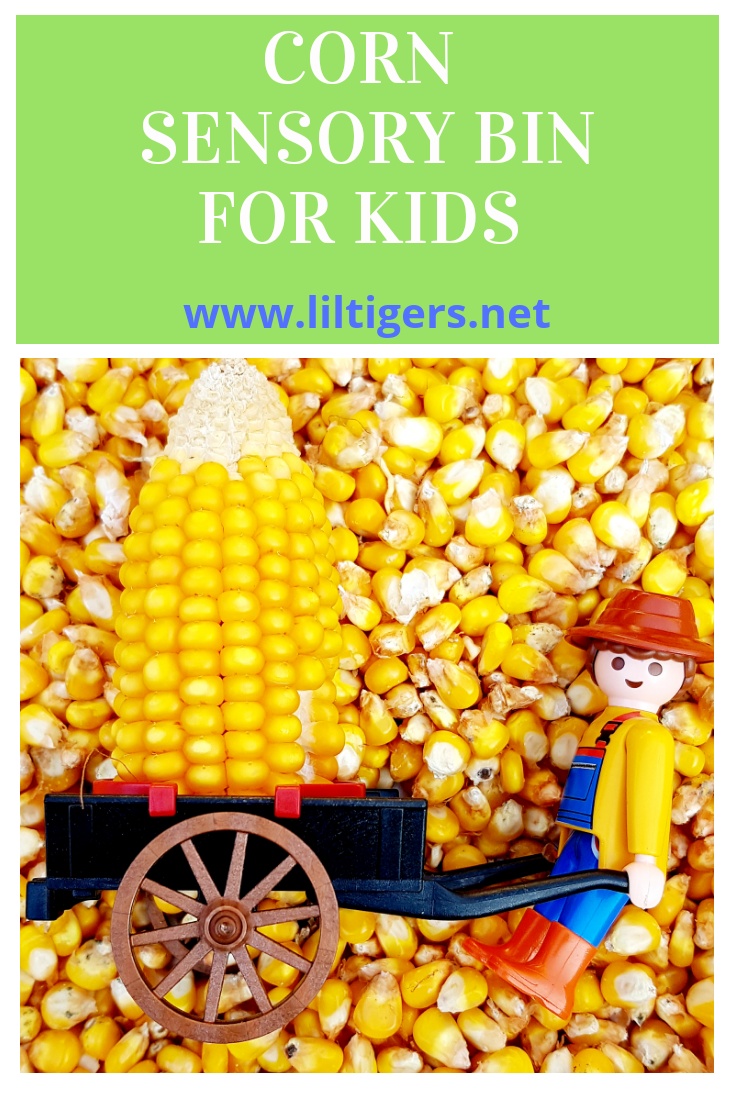 Corn Sensory Bin for Kids - Fun on the Farm