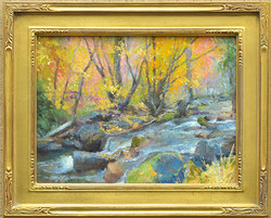 Color Along High Creek