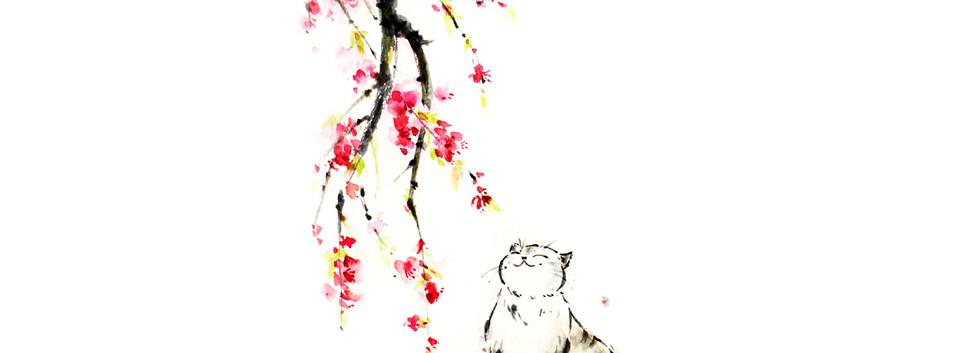 cat flower web.jpg