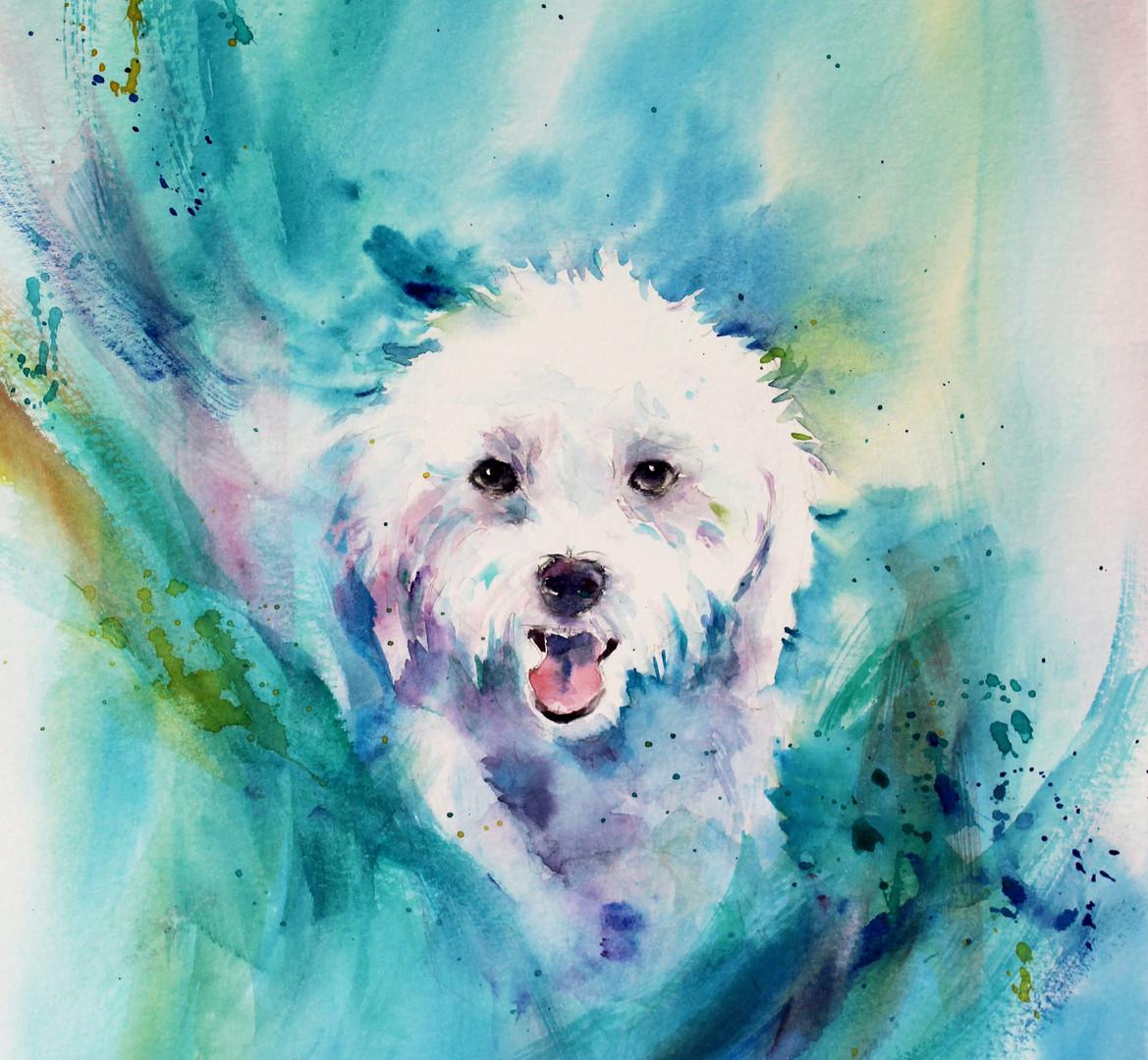 Dog Treasure (2).jpg
