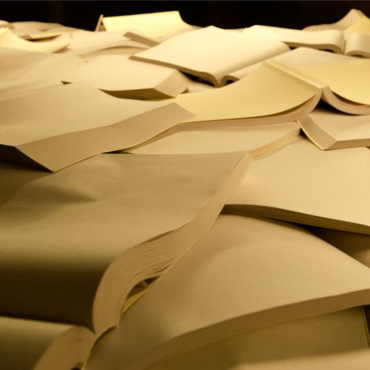Sem título (Tragédia civil) | 2019 80 livros em papel jornal e sistema de iluminação Dimensões variáveis