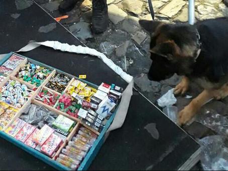Ambulantes são flagrados com drogas pelos cães do Choque