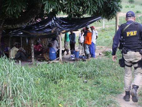 Dezenove pessoas mantidas em trabalho escravo são resgatadas de fazenda