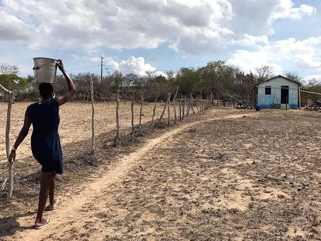 Aplicativo para celular funciona como monitor da seca no Nordeste